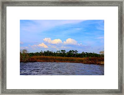 Framed Print featuring the photograph Cabbage Palms And Salt Marsh Grasses Of The Waccasassa Preserve by Barbara Bowen