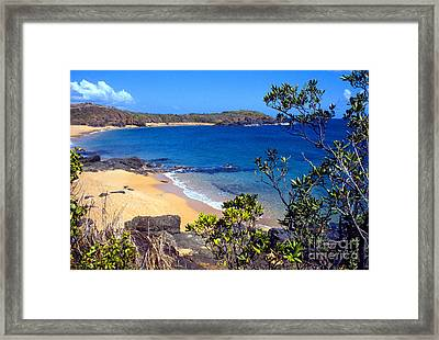 Cabeza Chiquita El Convento Beach Framed Print by Thomas R Fletcher