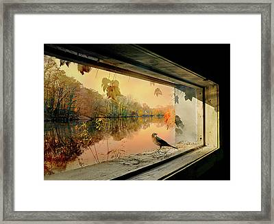 Perfect Peace Framed Print by Diana Angstadt