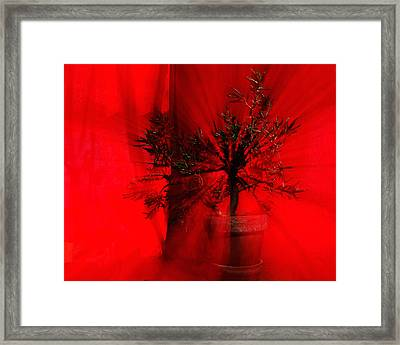 Framed Print featuring the photograph Cabin Fever Dance by Susan Capuano
