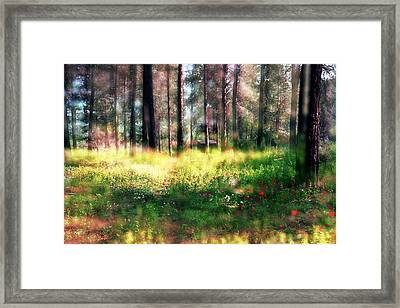 Framed Print featuring the photograph Cabin In The Woods In Menashe Forest by Dubi Roman