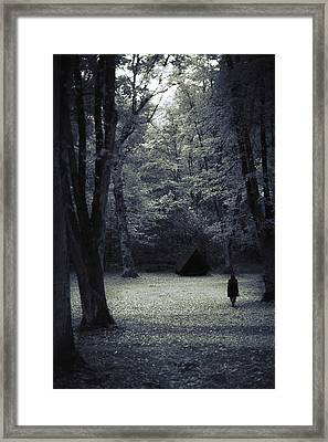 Cabin In The Woods Framed Print by Art of Invi