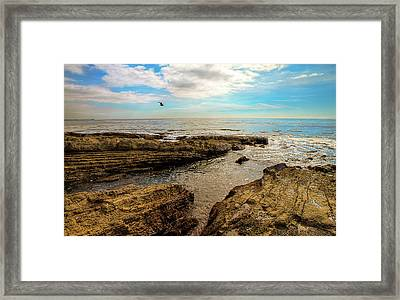Cabrillo Beach San Pedro California Framed Print