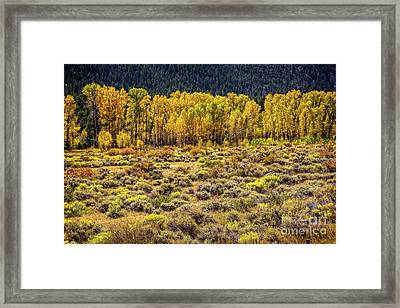 Cache La Poudre River Colors Framed Print by Jon Burch Photography
