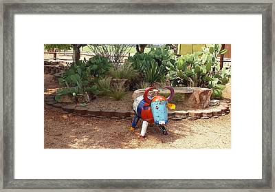Cacti Garden At Wildseed Farms Framed Print