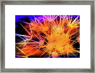 Cactus Abstract 2 Framed Print by Judi Bagwell