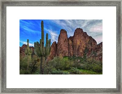 Framed Print featuring the photograph Cactus And Goldfield Mountains by Dave Dilli