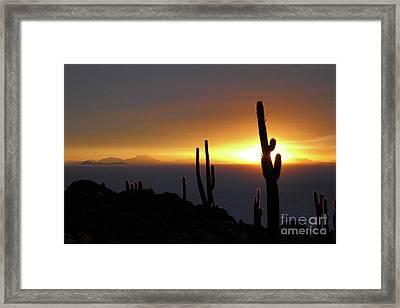 Cactus And Stormy Sunset Salar De Uyuni Bolivia Framed Print by James Brunker