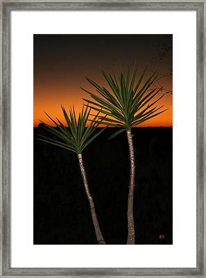 Cactus At Sunset Framed Print by Julie Reyes