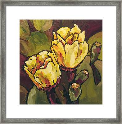 Cactus Blooms Framed Print by Sandy Tracey