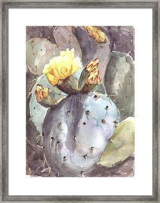 Cactus Flower Framed Print by Marilyn Barton
