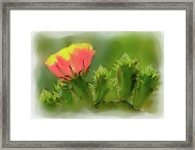 Framed Print featuring the painting Cactus Flower On A Cactus Plant Ap by Dan Carmichael
