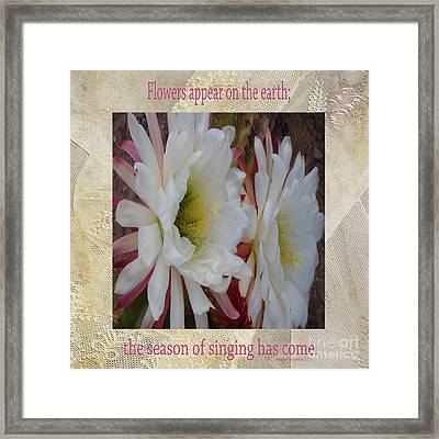 Cactus Flower Song Of Solomon Framed Print by Beverly Guilliams