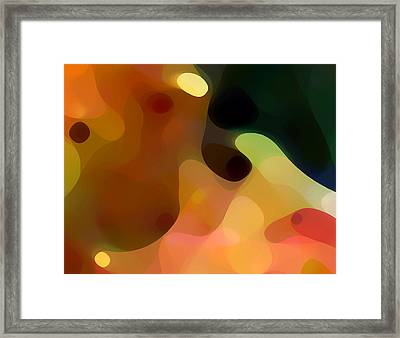 Cactus Fruit Framed Print by Amy Vangsgard