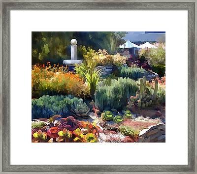 Cactus Garden And Fountain Framed Print by Elaine Plesser