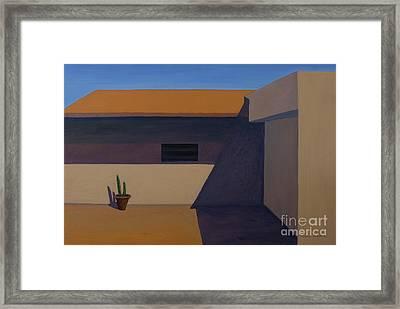 Cactus In Summer Heat Framed Print