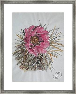 Cactus Joy Framed Print