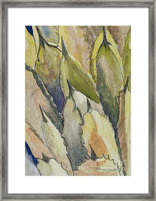 Cactus Leaves Framed Print by Tracey Hunnewell