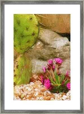 Cactus Lines Framed Print