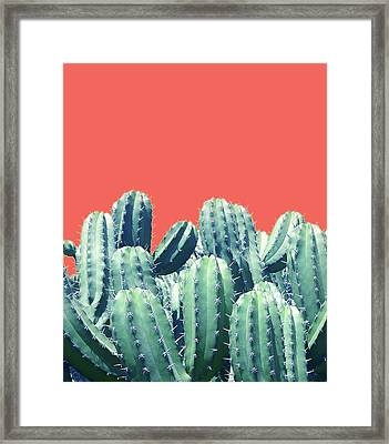 Cactus On Coral Framed Print