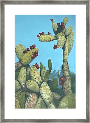Cactus On Vicky Framed Print