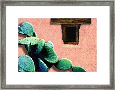 Framed Print featuring the photograph Cactus by Paul Wear