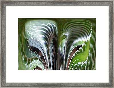 Cactus Predator Framed Print by Barbara Griffin