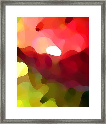 Cactus Resting Framed Print