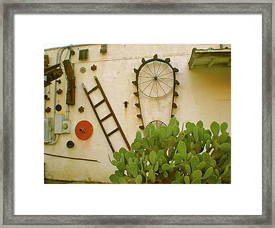 Framed Print featuring the photograph Cactus by Sheep McTavish
