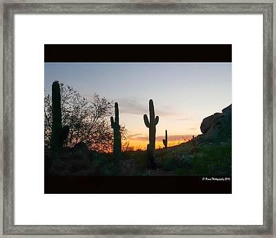 Cactus Sunset Framed Print