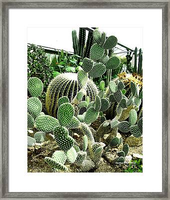 Cactus Tower 61d Framed Print by Brian Gryphon