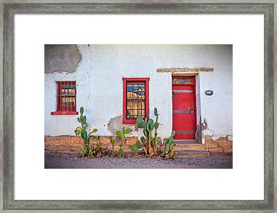 Cactus With Red Door And Windows Framed Print