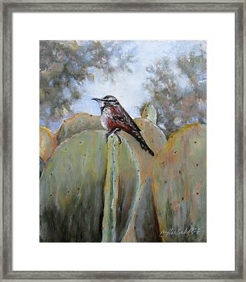 Cactus Wren Framed Print by Carole Haslock