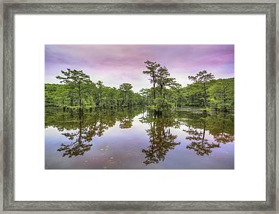 Caddo Lake Sunrise 1 Framed Print by Rob Greebon