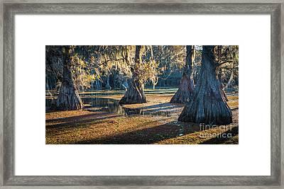 Caddo Panorama Framed Print