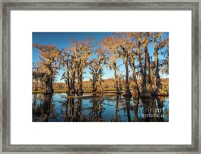Caddo Reflections Framed Print
