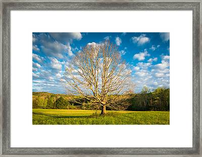 Cades Cove Great Smoky Mountains National Park Scenic Landscape Framed Print by Dave Allen