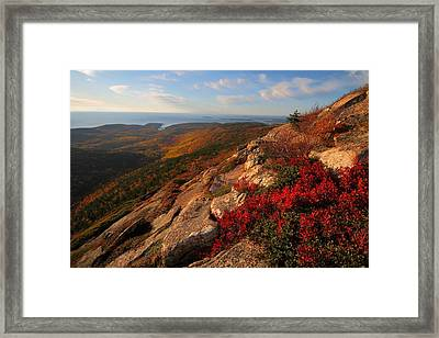 Cadillac Mountain Sunrise At Acadia National Park Framed Print