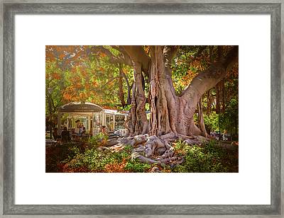 Cafe By The Grand Old Tree Lisbon Portugal Framed Print