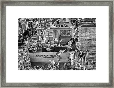 Cafe Lady Catherine Black And White Framed Print