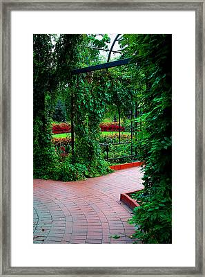 Cage  Growth Framed Print