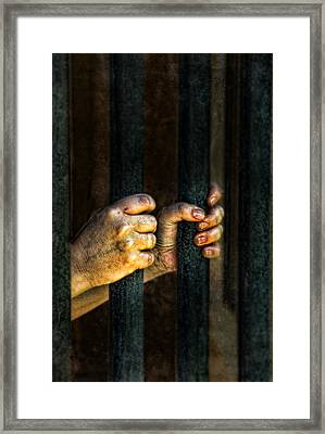 Caged 2 Framed Print by Jill Battaglia