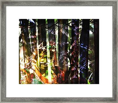 Caged Framed Print by Camille Lopez