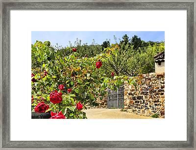 Cahecho 155a7778a Framed Print