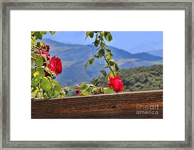 Cahecho 155a7783a Framed Print