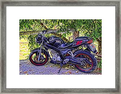 Cahecho 155a7796 Framed Print