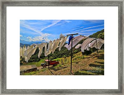 Cahecho 155a7842 Framed Print