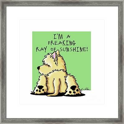 Cairn Terrier Sunshine Framed Print by Kim Niles