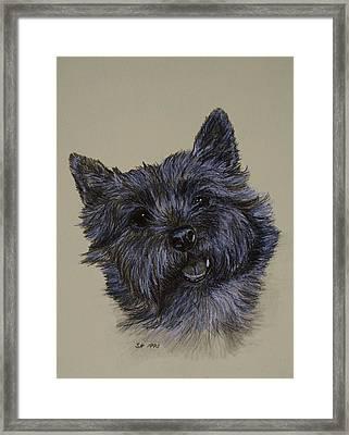 Cairn Terrier Framed Print