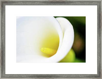 Cala Close Framed Print